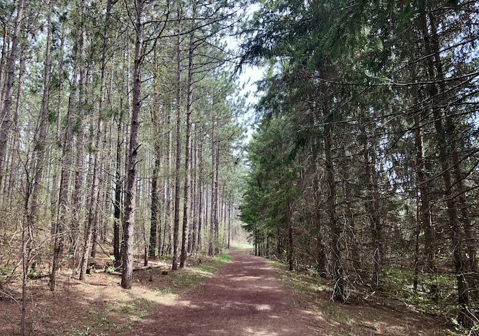 Hockley Valley Resort Trails
